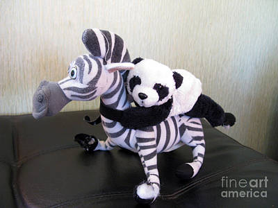 Print featuring the photograph Riding A Zebra.traveling Pandas Series by Ausra Huntington nee Paulauskaite
