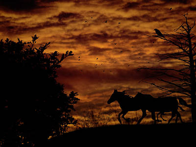 Riding Into The Night Art Print by Diane Schuster