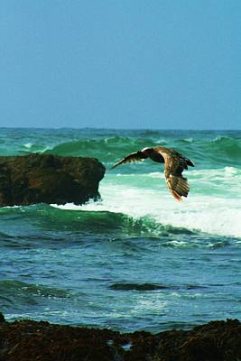 Photograph - Riding The Wind Waves by Joseph Coulombe