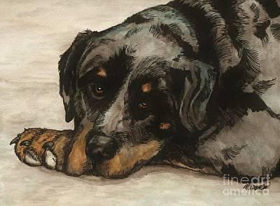 Rottweiler Puppy Drawing - Riley by Meagan  Visser