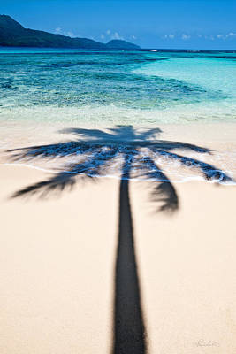 Photograph - Rincon Shadow by Renee Sullivan