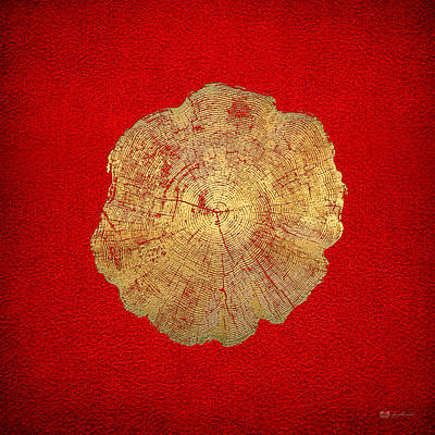 Digital Art - Rings Of A Tree Trunk Cross-section In Gold On Red by Serge Averbukh