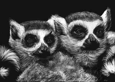 Ringtail Lemurs Art Print by Heather Ward
