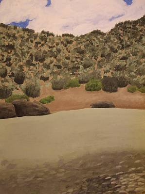 Rio Grande New Mexico Art Print by Elizabeth Sullivan