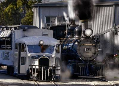 Photograph - Rio Grande Southern 41 And Galloping Goose 3 by Ken Smith