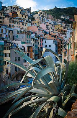 Photograph - Riomaggiore - Cinque Terre by Dany Lison