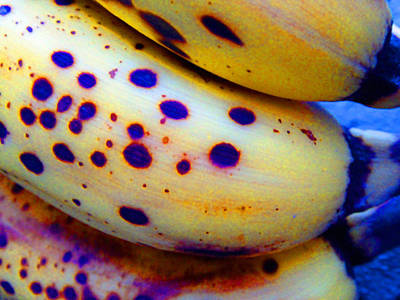 Photograph - Ripe Bananas by Laurie Tsemak