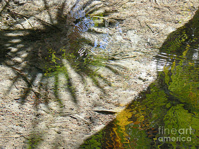 Wall Art - Photograph - Ripple In Still Water by Susie Gillatt