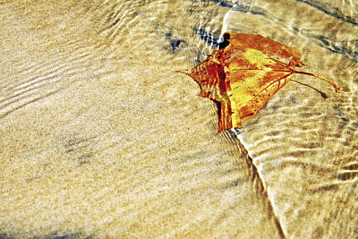 Photograph - Ripple In Time by Jason Politte