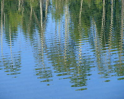 Photograph - Ripples And Reflections by Ramona Johnston