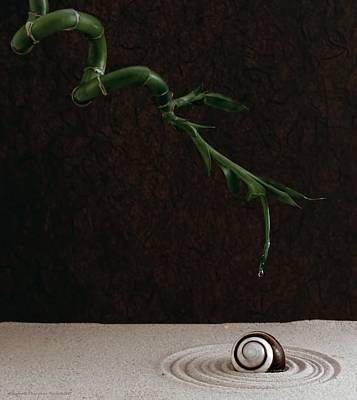 Balance In Life Photograph - Ripples by Chrystyne Novack