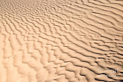 Sahara Photograph - Ripples by Delphimages Photo Creations
