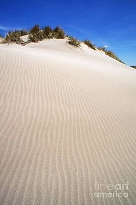 Ripples In Sand Dune Art Print by Sami Sarkis