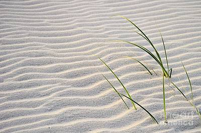 Photograph - Ripples In The Sand by Sharon Woerner