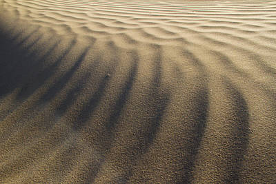 Photograph - Ripples In Time by Kunal Mehra
