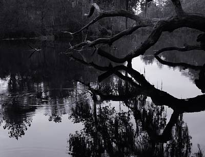 Ripples Of Black And White Art Print by Warren Thompson