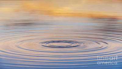 Water Drops Photograph - Ripples On A Still Pond by Tim Gainey