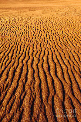 Desert Photograph - Ripple Patterns In The Sand 3 by James Brunker