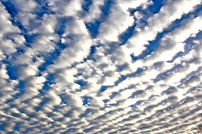 Photograph - Rippling Clouds by Liz Vernand