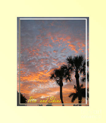 Photograph - Rise And Shine. Sunrise In  Florida. Fort Myers. Usa  by Oksana Semenchenko