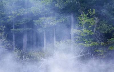 Barbara Smith Photograph - Rising Mist by Barbara Smith