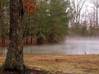 Photograph - Rising Mist by Pamela Hyde Wilson
