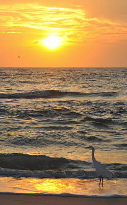 Photograph - Rising Tide Setting Sun by Jeff Cook