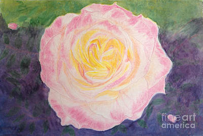 Drawing - Ritzy Rose In Watercolor Pencil by Conni Schaftenaar