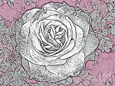 Photograph - Ritzy Rose With Ink And Rose Pink Background by Conni Schaftenaar