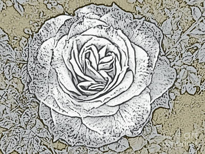 Rose Photograph - Ritzy Rose With Ink And Taupe Background by Conni Schaftenaar