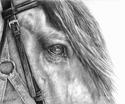 Equine Drawing Drawing - Rive Gauche by Sheona Hamilton-Grant
