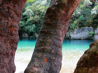 Photograph - River And Boles by Alexandros Daskalakis