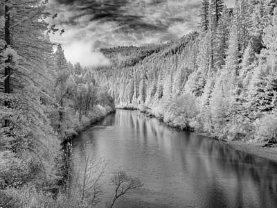 Photograph - River And Redwoods by Greg Nyquist