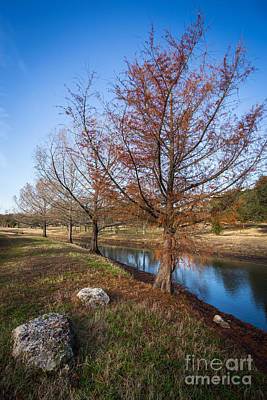 Photograph - River And Winter Trees by John Wadleigh