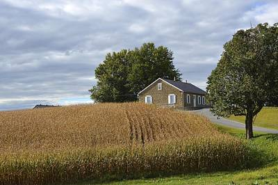 Photograph - River Corner Mennonite Church by Tana Reiff