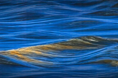 Photograph - River Detail Of The Grand River In Grand Rapids Michigan by Randall Nyhof