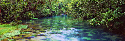Ozarks Photograph - River Flowing Through A Forest, Big by Panoramic Images