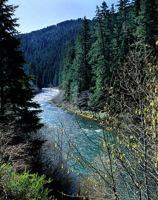 River Flowing Through A Forest, North Art Print