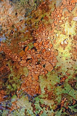 Marcia Lee Jones Photograph - River Gold by Marcia L Jones