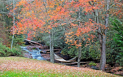 Photograph - River Hammock In The Fall by Duane McCullough