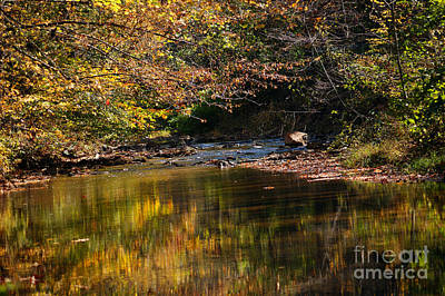 Art Print featuring the photograph River In Autumn by Lisa L Silva