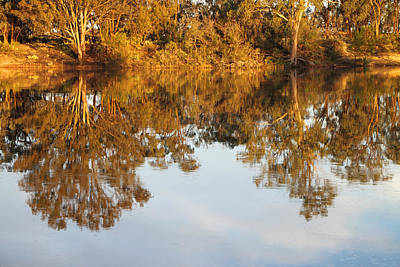 River Murray Reflections Early Evening Art Print by Carole-Anne Fooks