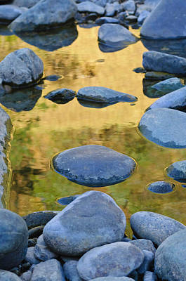 Art Print featuring the photograph River Of Gold by Sherri Meyer