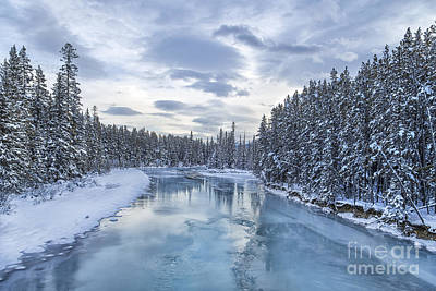 Frost Photograph - River Of Ice by Evelina Kremsdorf