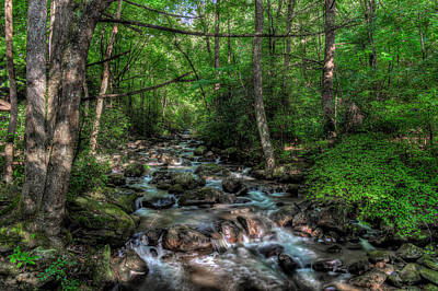 Jones Gap State Park South Carolina Art Print