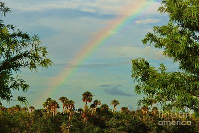 Photograph - River Park Rainbow by Lynda Dawson-Youngclaus