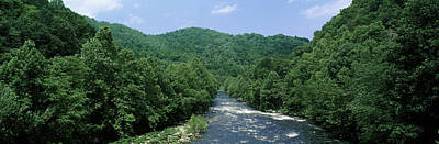 Cherokee Photograph - River Passing Through A Forest, Pigeon by Panoramic Images