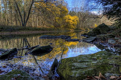 Photograph - River Reflection by David Dufresne