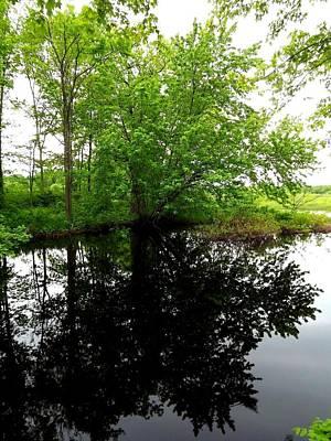 River Reflections Art Print by Dancingfire Brenda Morrell