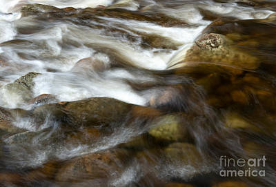 Photograph - River Rocks by Sharon Seaward